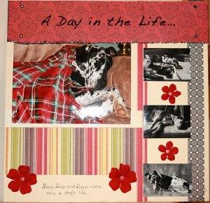 day-life-lexi