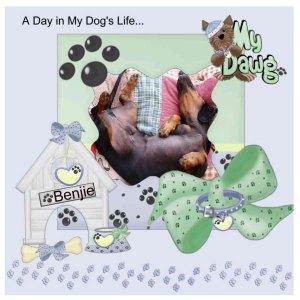 lizette-dog-life