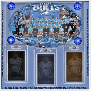 trudy-blue-bull