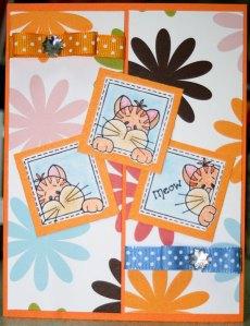 mojo-meow1