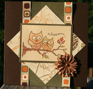 autumn-owls